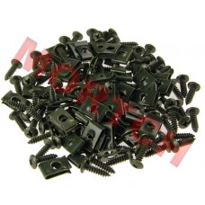 Body Clip and Screw Set 4.2*16