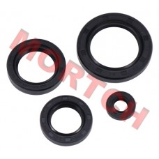 CF250 CH250 Full Set of Oil Seal