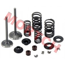 CF250 Inlet/Exhaust Valve Sets