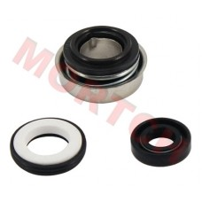CF250 CH250 Water Pump Seal